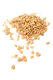 fenugreek Royaltyfri Foto