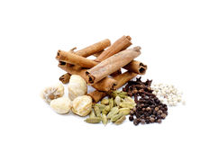 Fenugreek,Candlenut,cinnamon,clove,cardomom, blackpepper, whitepepper Stock Photos