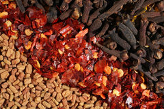 Fenugreek, chillies and cloves Royalty Free Stock Photos