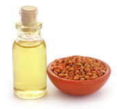 Fenugreek with oil in bottle Stock Images