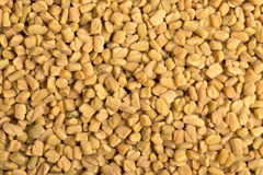 Fenugreek seed background Royalty Free Stock Photography