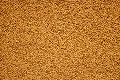 Fenugreek seeds background Royalty Free Stock Photography
