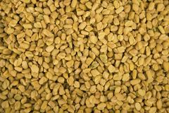 Fenugreek seeds background, spice, culinary ingredient. Indian Spices. Fenugreek seeds background, spice, indian culinary ingredient Royalty Free Stock Images