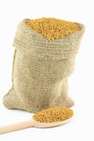 Fenugreek seeds in burlap bag. Royalty Free Stock Photos