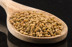 Fenugreek seeds on a kitchen spoon Royalty Free Stock Images