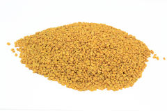 Fenugreek seeds on pile. Stock Photo