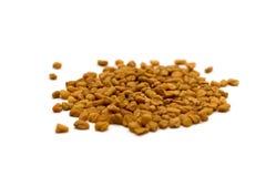 Fenugreek seeds royalty free stock photos