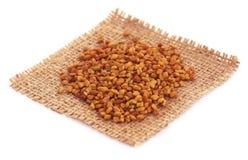 Fenugreek seeds in sack Stock Image