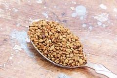 Fenugreek seeds on spoon Royalty Free Stock Photo