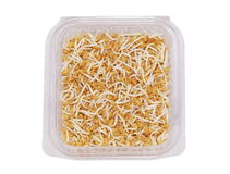 Fenugreek sprouts salad Royalty Free Stock Image