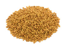 Fenugreek on white Stock Images