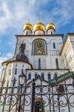 Feodorovsky我们的夫人Feodorovskaya象的大教堂大教堂墙壁的底视图  库存照片