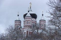 Feofaniya jest parkiem lokalizować w dziejowym sąsiedztwie Kijów Ortodoksalna katedra góruje pod nim zdjęcie royalty free