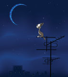 The Feral  Cat and the Moon  Cartoon Illustration. The grey cat sits on a roof and looks at the moon Stock Image