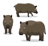 Feral Hog Cartoon Vector Illustration. Animal Cartoon EPS10 File Format Stock Photos