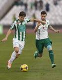 Ferencvaros contro la partita di calcio della lega della Banca di Gyori ETO OTP Fotografia Stock Libera da Diritti