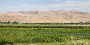 Fergana of Fargona-vallei in Kyrgyzstan royalty-vrije stock foto