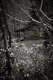Spooky Log Cabin Stock Photography