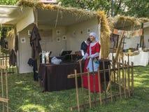 Feria al lado del castillo de Wawel Imagenes de archivo