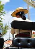 Feria de Sevilla, mujer con el sombrero en un carro del caballo Foto de archivo