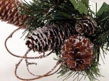 Feriado & sazonal: Cone do pinho do Natal & neve artificial fotografia de stock royalty free
