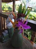 Feriado de Bali para os amantes da flor imagem de stock