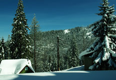 Feriado de inverno Foto de Stock