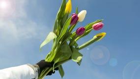 Feriado do ` s das mulheres o 8 de março Foto de Stock