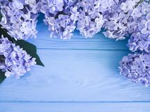 Feriado lilás fresco bonito do presente do dia de mães do aniversário do cumprimento da decoração em uma beira de madeira do fund fotografia de stock