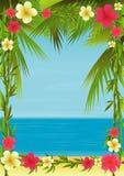 Feriado tropical ilustração do vetor