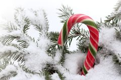 Feriados de inverno imagens de stock royalty free