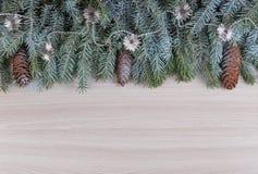 Feriados de inverno da decoração dos ramos spruce cobertos com a geada com cones e os grânulos prateados Fotografia de Stock Royalty Free