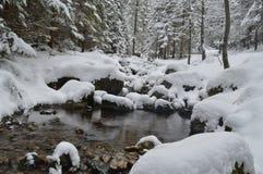 Feriados de inverno em Zakopane imagens de stock