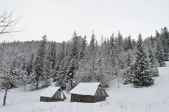 Feriados de inverno em Zakopane fotos de stock