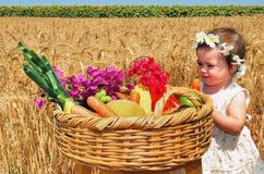 Feriados judaicos - Shavuot Fotografia de Stock Royalty Free