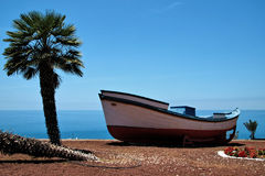 Feriados perto do oceano em Tenerife, canário, Espanha, Europa Fotos de Stock Royalty Free