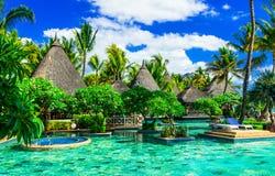 Feriados tropicais exóticos Termas luxuosos com a associação da nadada em Maurícias foto de stock