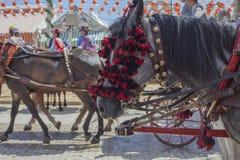 Feriapferde Feria de Abril in Sevilla Stockbild