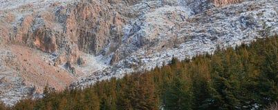 Ferie för bergbergspor Royaltyfria Bilder