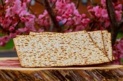 Ferie för påskhögtid för Pesah berömbegrepp judisk Royaltyfri Foto