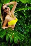 2 ferie sommar Royaltyfria Bilder