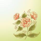 Feriebakgrund, blomma och sidor Arkivfoto