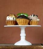Ferieefterrätter, olika dekorerade muffin Royaltyfri Fotografi