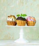 Ferieefterrätter, olika dekorerade muffin Royaltyfri Foto