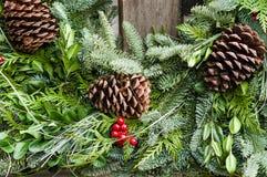 Feriekrans av evergreen och kottar Royaltyfri Fotografi