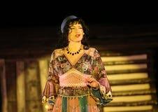 Feriemötet med operan i stuteri av den Hucul ponnyn Gladyszow i Regietow poland Arkivfoton