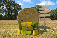 Ferien auf dem Bauernhof Stockfoto