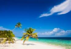 Ferien am perfekten tropischen weißen Sandstrand Lizenzfreies Stockbild
