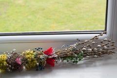 Feriepil söndag, pilfilialer på fönstret på våren royaltyfria foton