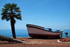 Ferier nära havet på Tenerife, kanariefågel, Spanien, Europa Royaltyfria Foton